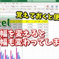 Excel エクセル セル幅 グラフ