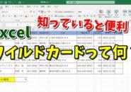 Excel エクセル ワイルドカード アスタリスク *