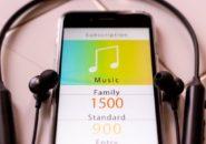 iPhone アイフォン 音量 小さい イヤホン