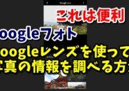 Googleフォト Googleレンズ 検索 花の名前