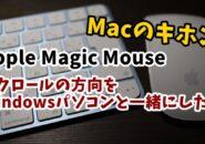 Apple MagicMouse スクロール 方向